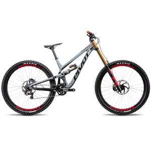 Phoenix 29 DH Bike - Grey Saint MTB